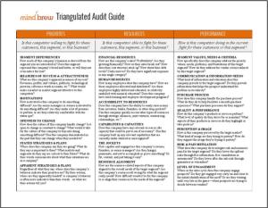 Triangulated Audit Guide Splash
